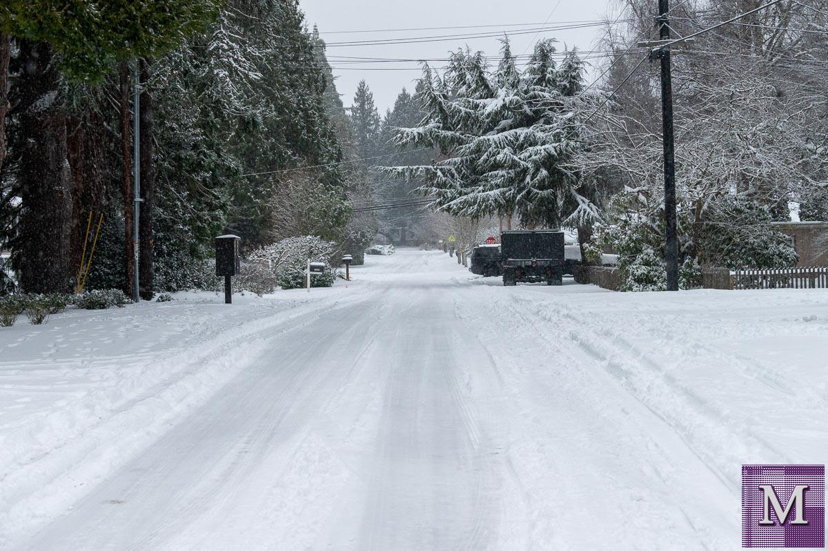 Kirkland, Washington, February 13, 2021 after 7 to 9 inches of snow blanketed the city